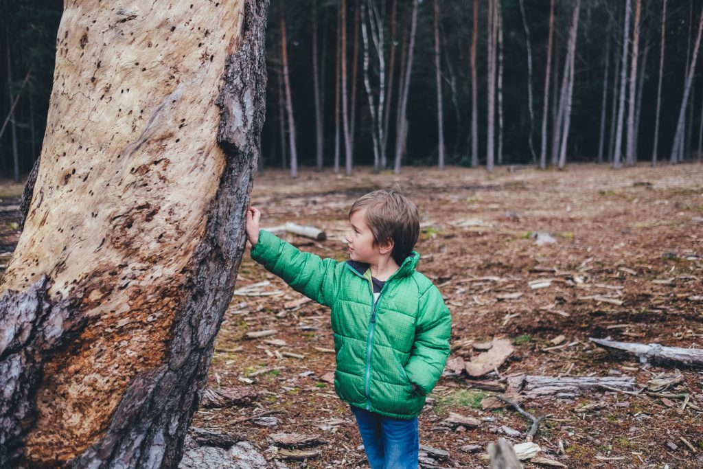 Young child in green jacket leaning against tree
